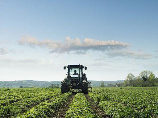 Agricoltura cambiamento climatico