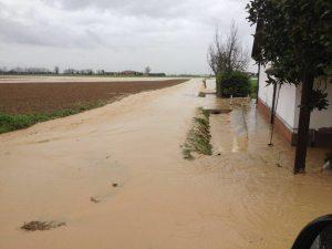 alluvione emilia 01
