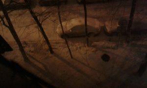 La neve nei sobborghi di Mosca. Foto di Tatiana Suvorova