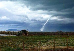 tornado marsala (5)