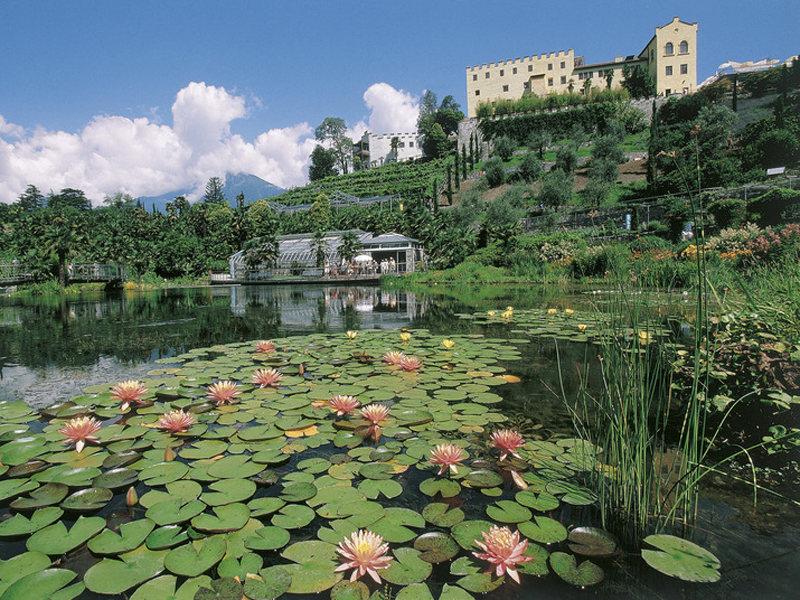 Viaggio alla alla scoperta dei giardini di castel - Giardini terrazzati immagini ...