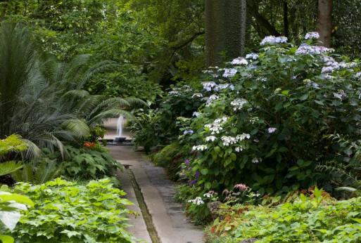 Viaggio in campania alla scoperta dei meravigliosi giardini la mortella foto meteo web - Giardino la mortella ...
