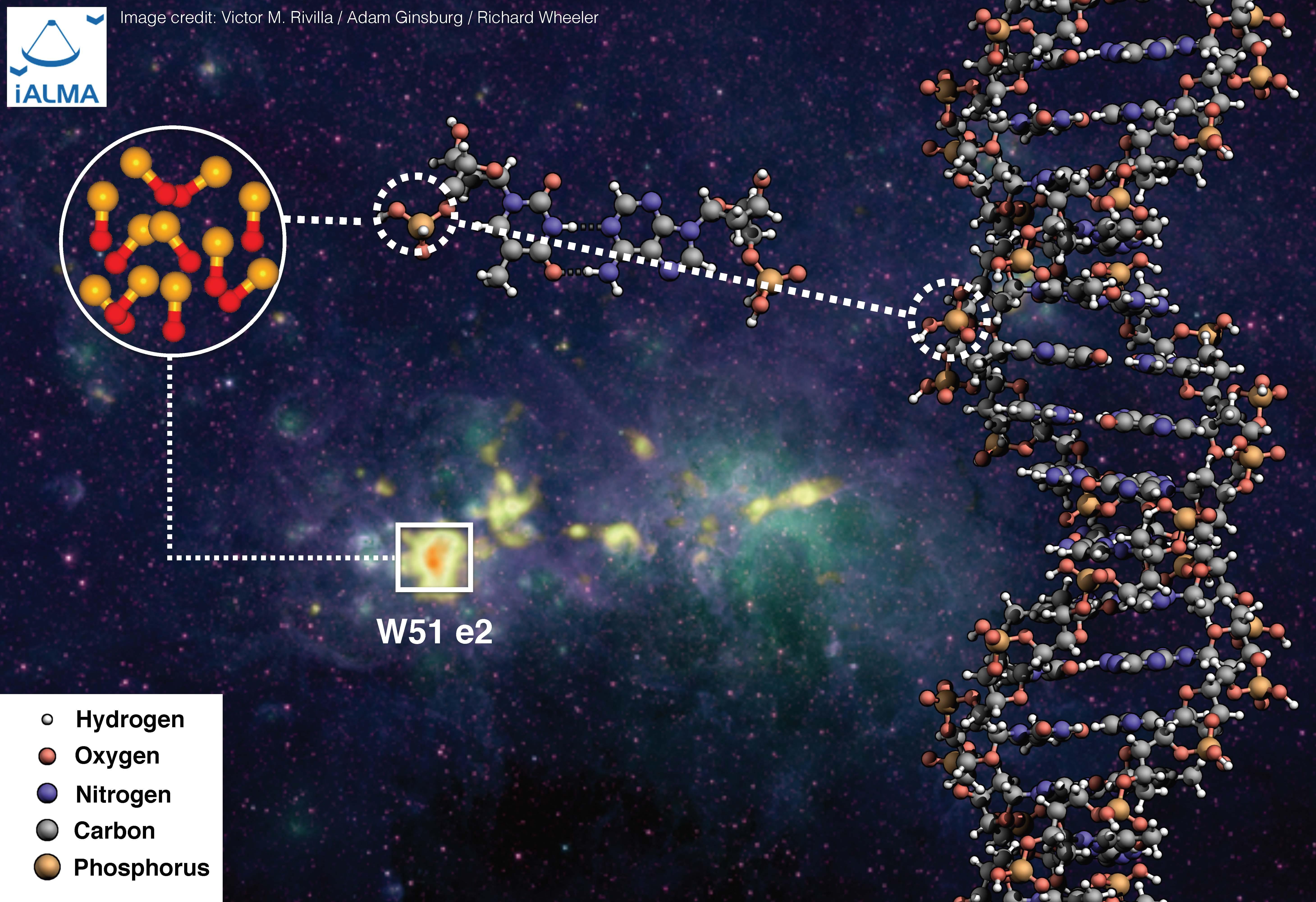 El recuadro de la imagen indica la zona de formación estelar denominada W51 e2, donde se ha descubierto la presencia de moléculas de P-O, que son determinantes para la formación del ADN. Créditos: Víctor M. Rivilla /