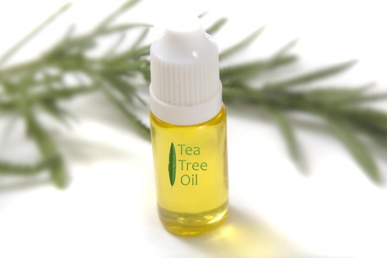 Tea Tree Oil: come usare l'olio essenziale miracoloso - Meteo Web