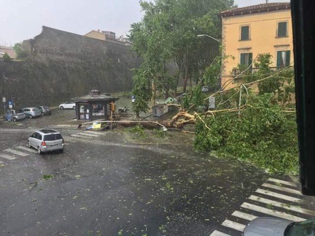 Maltempo, dopo le piogge si contano i danni