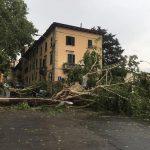 """Maltempo, Arezzo devastata da un """"groppo di vento"""": città in ginocchio [GALLERY]"""