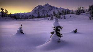 18916_winter_snow