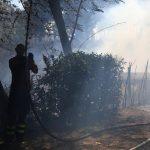 Incendi: ancora roghi nella Capitale, chiuso tratto della Roma-Fiumicino [GALLERY]