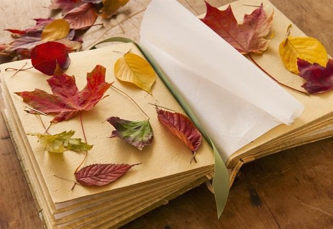 Equinozio d'autunno e gli antichissimi proverbi su clima e natura