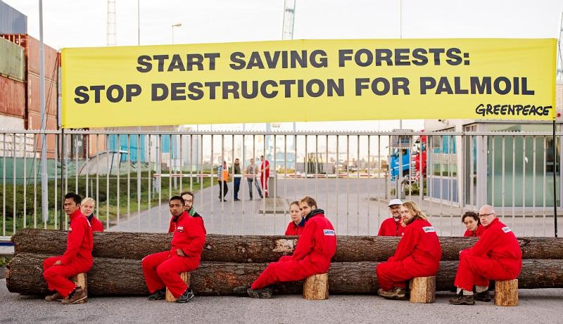 Greenpeace blocca una nave che trasporta olio di palma nel porto di Rotterdam [GALLERY]
