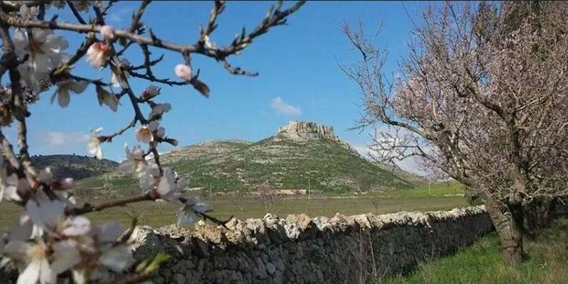 Viaggio in Puglia nell'incantevole Parco Nazionale dell'Alta Murgia