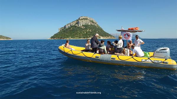 """In Sardegna le prime escursioni di avvistamento dei delfini certificate """"amiche del mare"""""""
