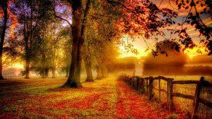 Equinozio d'autunno: un giorno di riflessione, bilancio e presa di coscienza