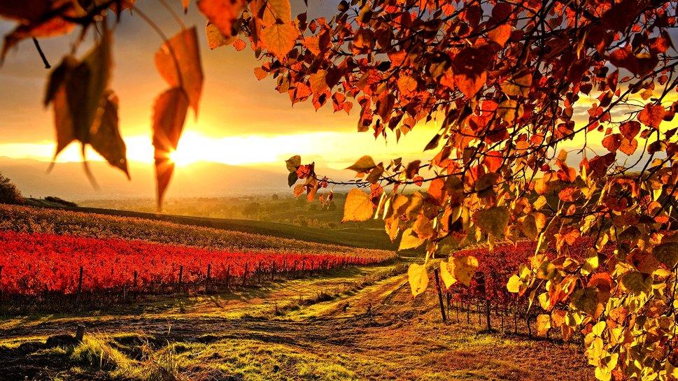 Equinozio d'autunno: un evento ricco di fascino, tradizioni, miti, leggende e storia