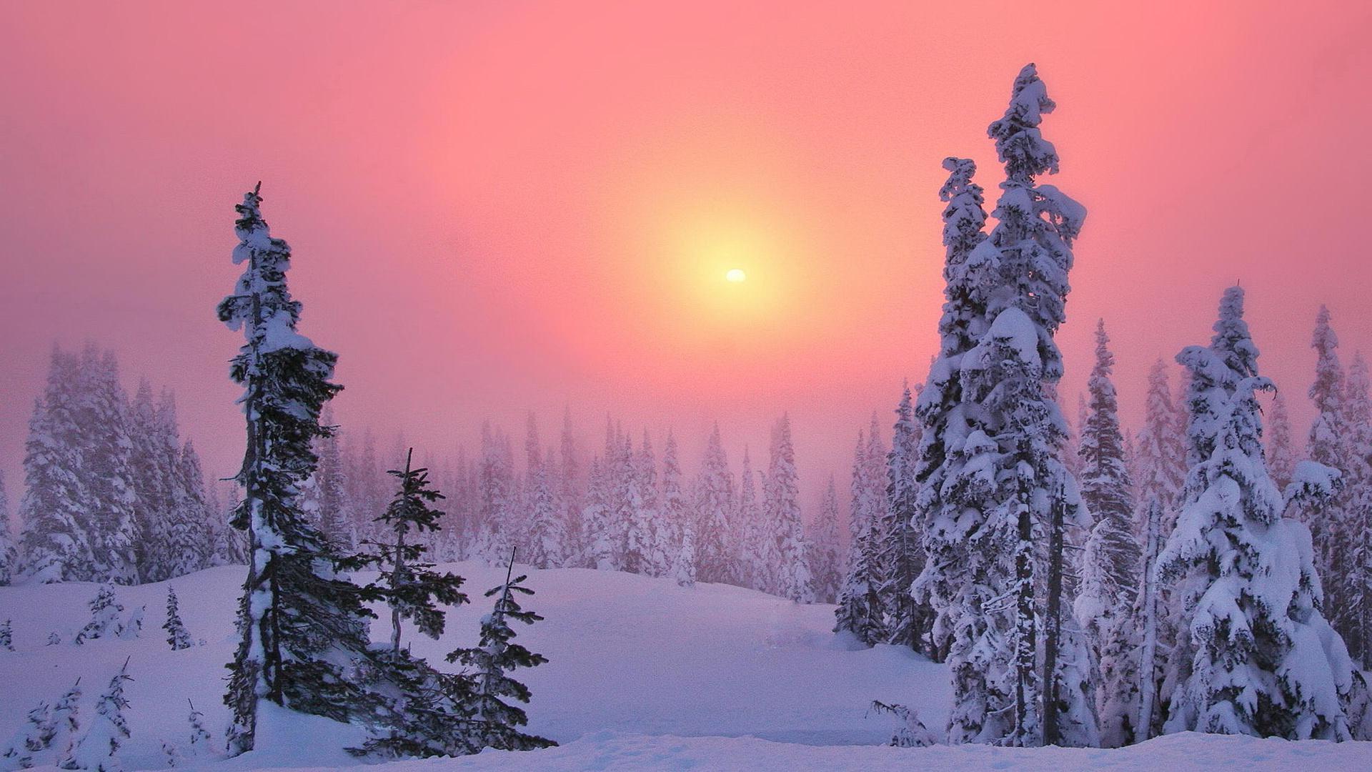 Prime gelate autunnali sulla Siberia, Ojmjakon si prepara alla prima nevicata di stagione