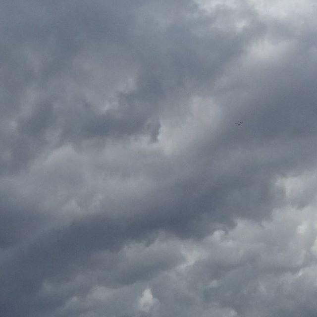 Allerta Meteo Campania: criticità per temporali estesa fino a domani