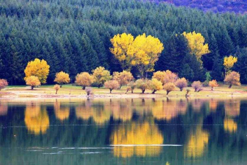 Lo straordinario spettacolo del Parco Nazionale della Sila d'autunno: il luogo ideale per ammirare i colori della nuova stagione [GALLERY]