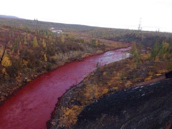 Disastro ambientale in Siberia: liquidi tossici nel fiume Daldykan [FOTO]