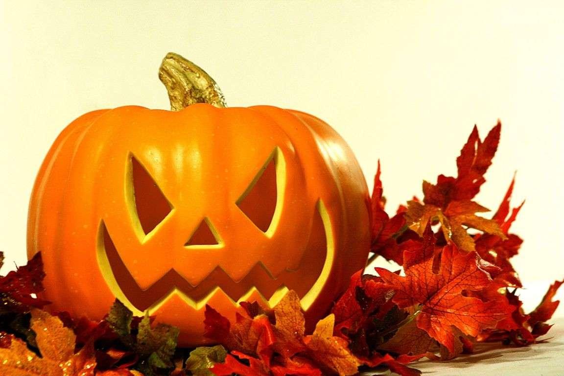 Come Fare Zucca Di Halloween.Come Realizzare Una Zucca Di Halloween E Conservarla A Lungo