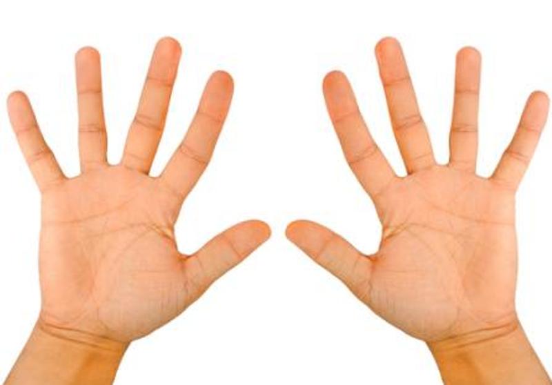Ecco perchè abbiamo cinque dita in ogni mano