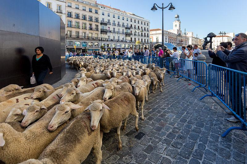 Migliaia Di Annunci Di Contatto Madrid