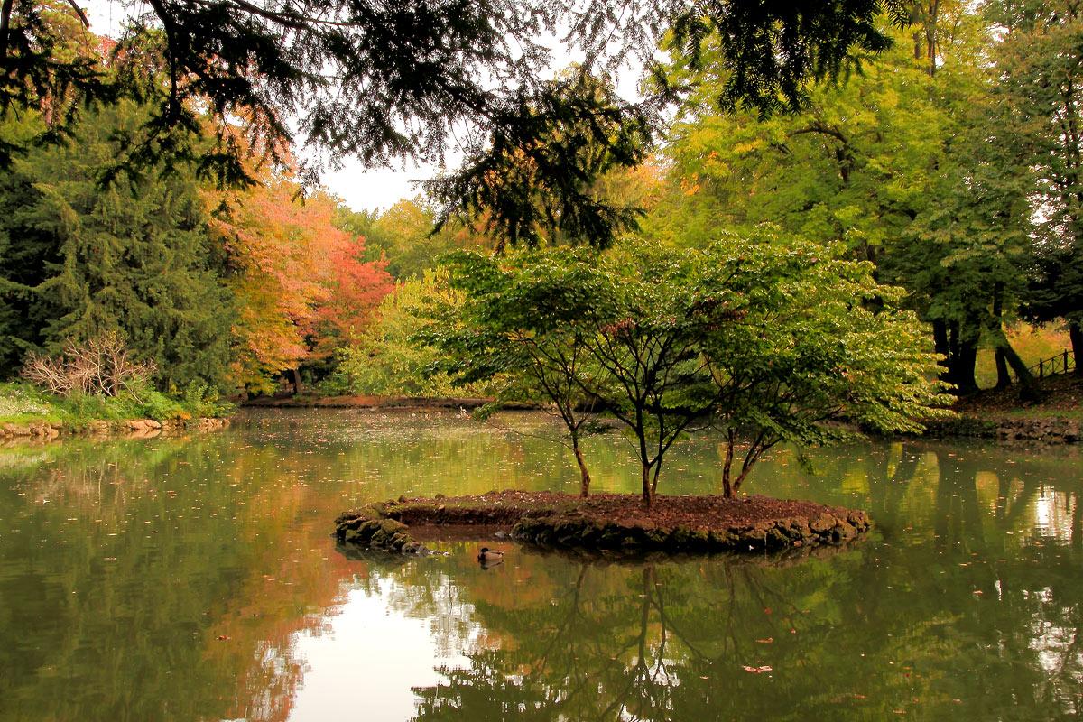 Il parco di monza luogo ideale per ammirare i colori dell for Immagini autunno hd