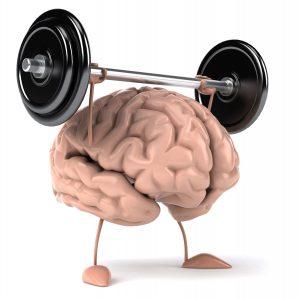 Cervello: la forza muscolare è un'indicazione della sua salu