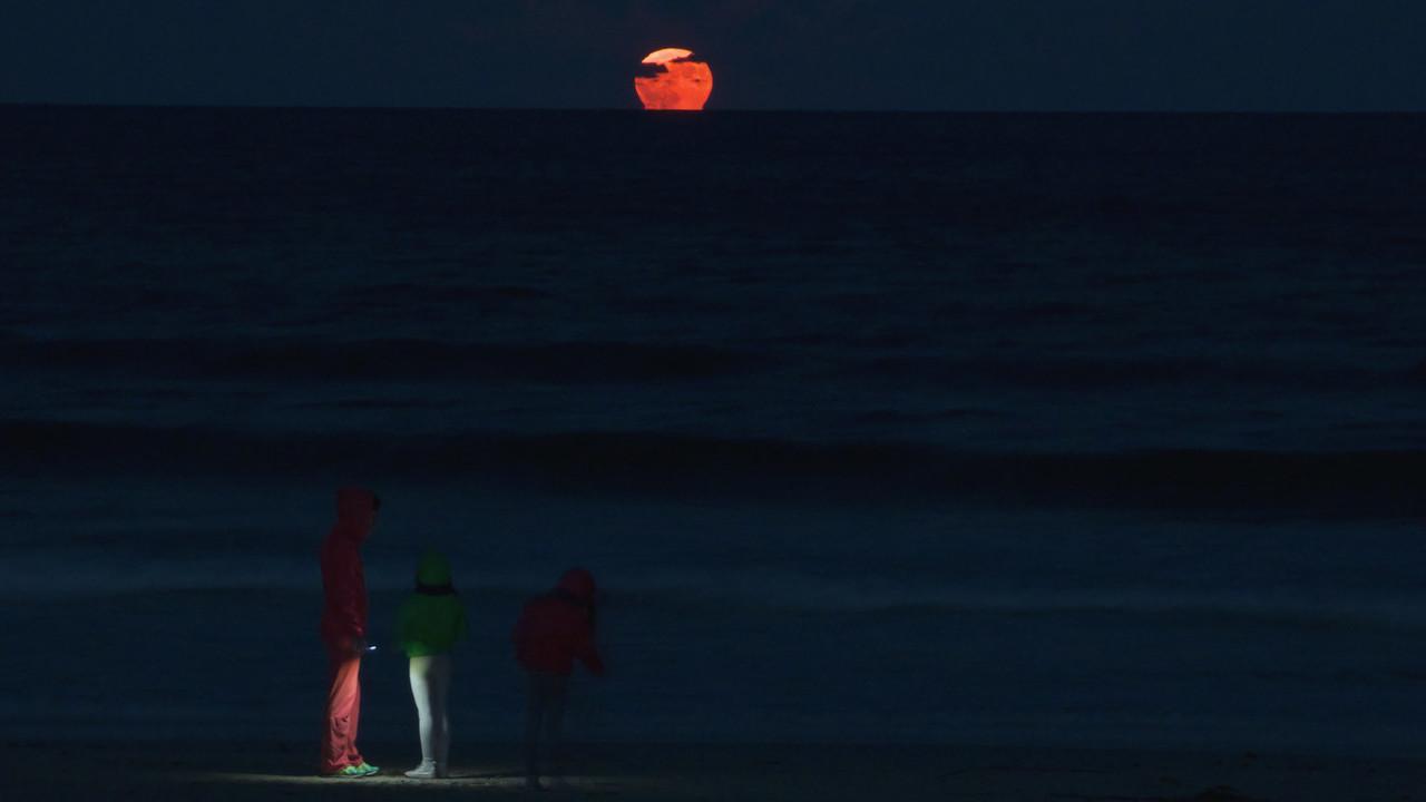 """Le straordinarie FOTO dell'alba della """"Luna di Sangue"""" di questa notte speciale [GALLERY]"""