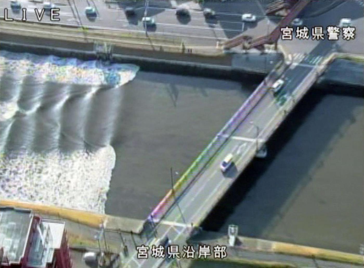Risultati immagini per terremoto, fukushima