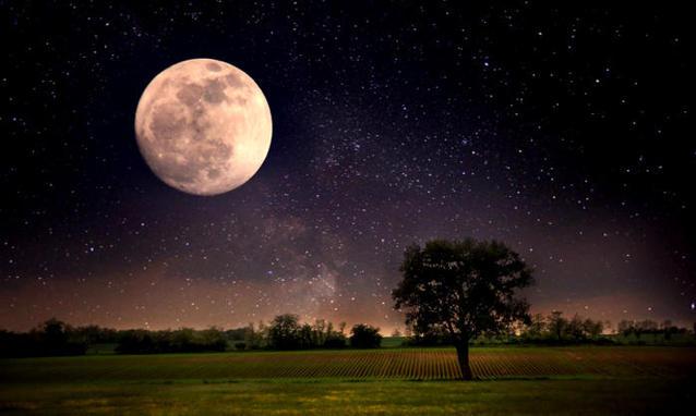 """""""La Grande Luna"""" su Rainews24: lo spettacolo della Superluna, la più luminosa degli ultimi 68 anni"""
