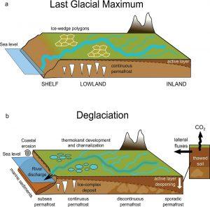 Fig. 6 Modello concettuale che descrive l'apporto di materiale terrestre in aree dominate da permafrost in differenti periodi glaciali-interglaciali (a) Durante periodi glaciali il carbonio organico tende ad accumularsi velocemente mentre il suolo è caratterizzato da un strato non congelato relativamente sottile che stagionalmente scambia con l'atmosfera ('active layer'). In queste condizioni il trasporto di sostanza organica verso l'Oceano Artico è modesta. (b) Come le temperature si alzano durante la deglaciazione, il permafrost rilascia materiale precedentemente intrappolato nel suolo.   Questo processo fisicamente avviene con l'inspessimento dell''active-layer' in congiunzione con altri processi tipo termocarsismo e sviluppo del reticolo idrografico. L'implicazione climatica di questa destabilizzazione termica è la trasformazione di materiale organico virtualmente stabile in un substrato disponibile per la degradazione microbica e quindi la produzione di anidride carbonica e metano