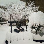 Bomba di Neve, che Solstizio d'Inverno sulle Alpi occidentali: Piemonte e Liguria sommerse [GALLERY]