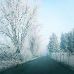 Freddo intenso, alba polare al Nord: picchi di -5°C e lo spettacolo della Galaverna [FOTO e DATI]