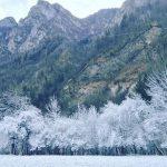 Anticiclone: 9° giorno consecutivo di gelo, nebbia e galaverna in pianura Padana. Emergenza smog sempre più grave [GALLERY]