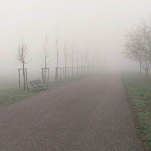 nebbia (26)