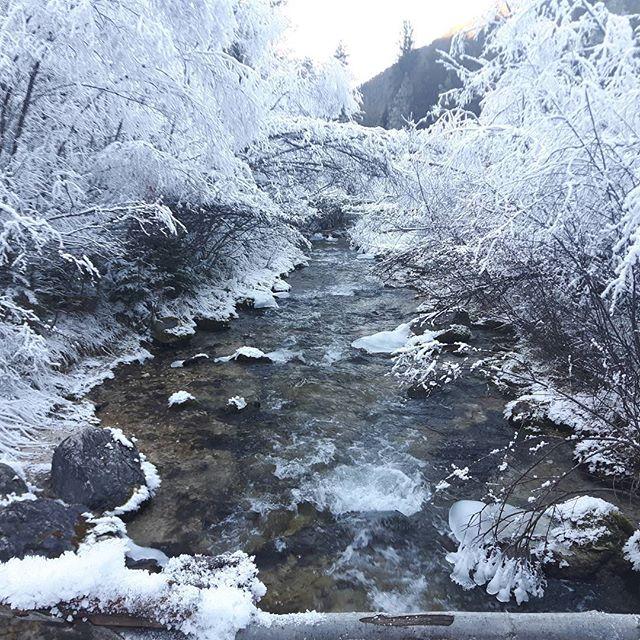 Allerta meteo trentino alto adige in arrivo grande gelo e for Mobilificio trentino alto adige