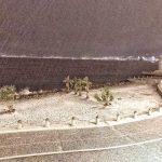 Reggio Calabria, Messina e Catania: inizia la storica nevicata tra Calabria e Sicilia, notte epocale intorno allo Stretto [FOTO LIVE]