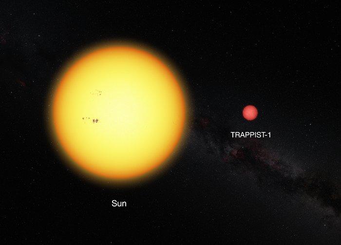 Questa immagine mostra il Sole e la nana ultrafredda TRAPPIST-1, in scala. La debole stella ha un diametro pari all'11% del diametro del Sole e ha un colore molto più rosso. Credit: ESO