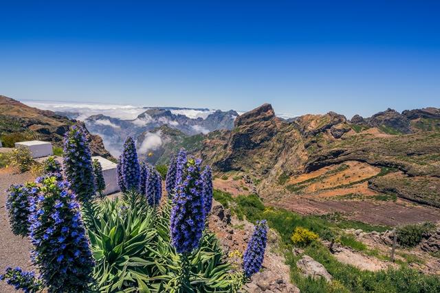 Pico do Arieiro è una montagna di 1.818. È la terza vetta più elevata dell'isola, dopo il Pico Ruivo e il Pico das Torres