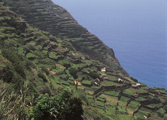 Le terrazze naturali di Seixal a picco sul mare