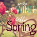 Buon Equinozio di Primavera 2019! Ecco le più belle IMMAGINI, GIF, FRASI, CITAZIONI e VIDEO da condividere oggi