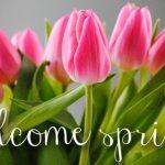 Equinozio di primavera: ecco IMMAGINI, VIDEO, FRASI e CITAZIONI da condividere su Facebook e WhatsApp [GALLERY]