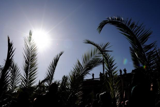 Domenica delle palme le tradizioni pi curiose in italia - Colorazione pagine palma domenica ...