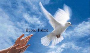 buona domenica delle palme (9)