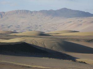 Media Luna, la località del deserto costiero del Perù dove è stato trovato lo scheletro fossile di Mystacodon selenesis (foto G. Bianucci)