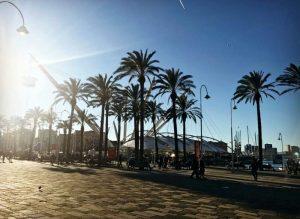 27 dicembre 2016, caldo primaverile a Genova - Foto di Martadrewcap, Instagram