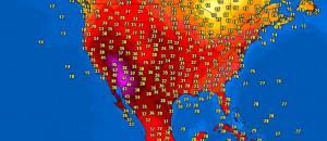 caldo california