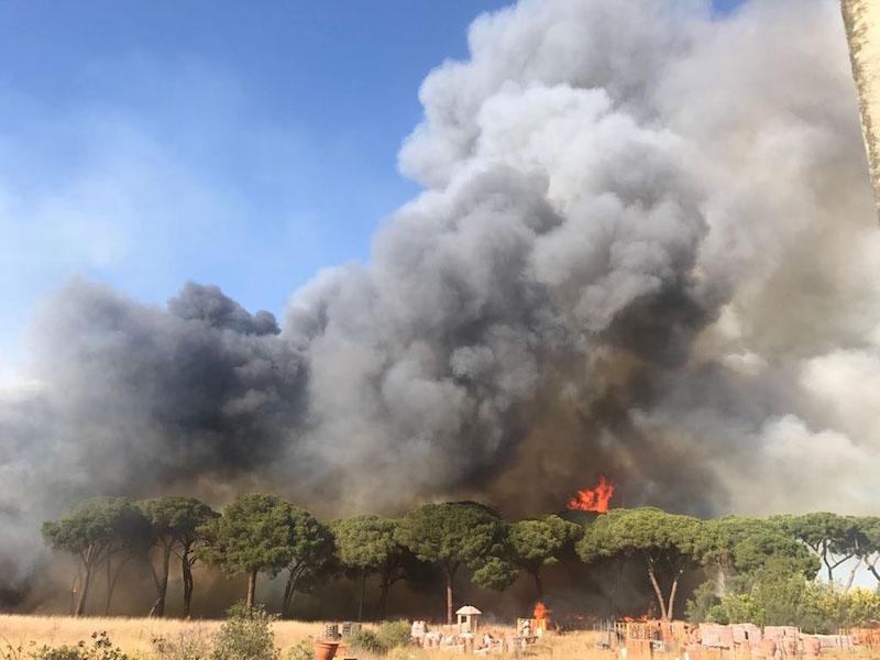 castel fusano incendi