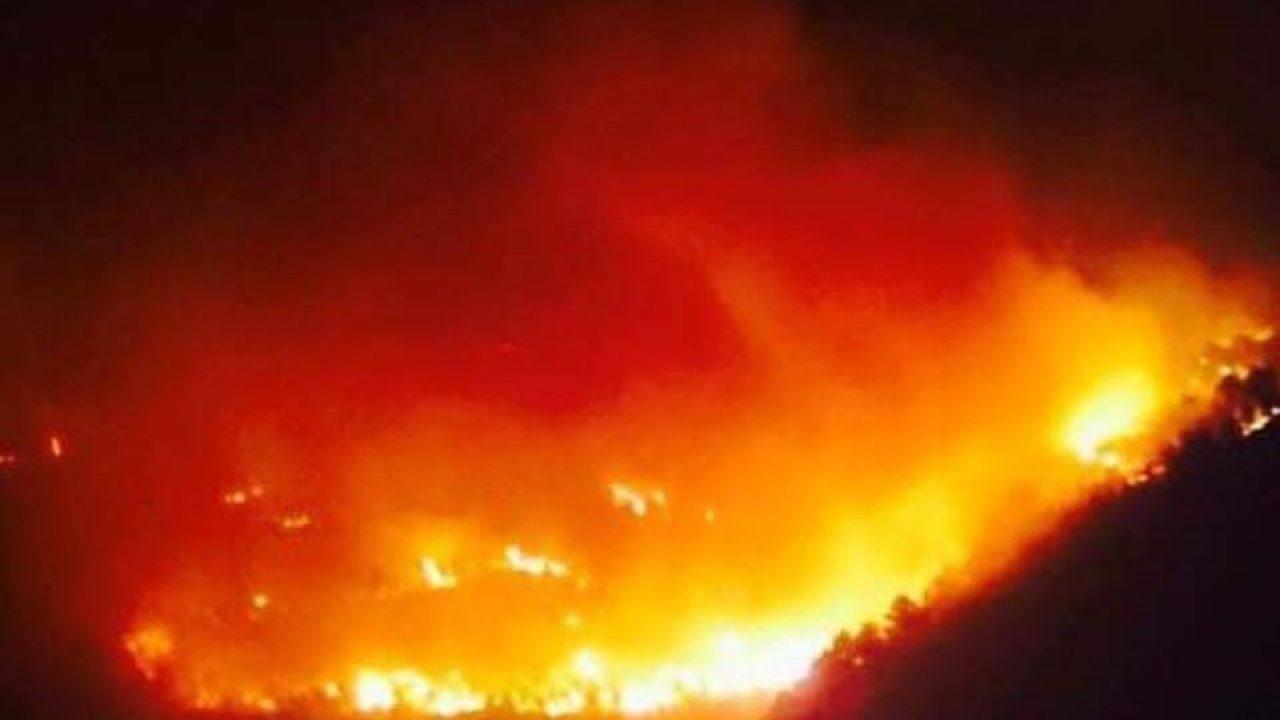 Lavoro A Chiaramonte Gulfi incendi ragusa: spento dopo 40 ore il rogo della pineta a