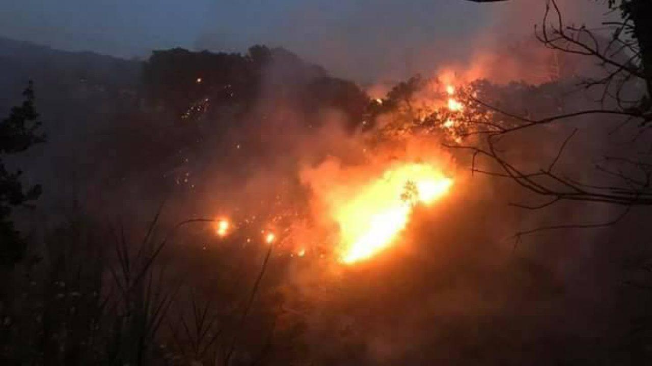 Vesuvio Incendi 2017 Danneggiata L 80 Della Superficie
